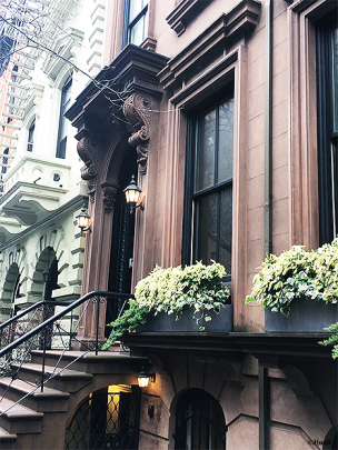 style-entrée-brooklyn-heights